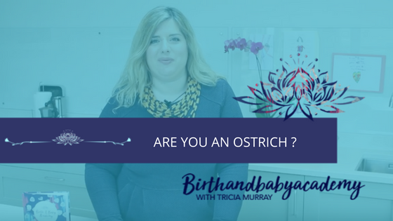 Are You An Ostrich?